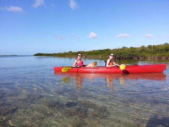 Florida Keys Kayaks and Eco Tours : 3h kayak tour