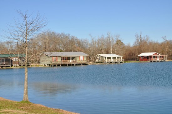 Poche's Fish-N-Camp: view of a few of the cabins