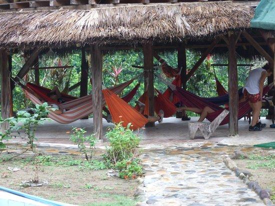 Suchipakari Amazon Rainforest Ecolodge: zona de descanso