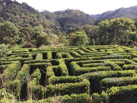 Amantikir Park: Labirinto em Amantikir