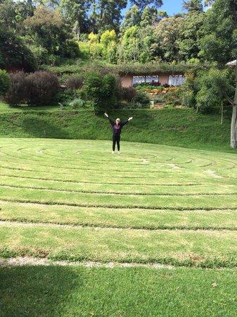 Amantikir Park: Labirinto aberto