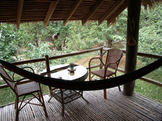 Tree Top Bungalows : my verander-with my own hammock!