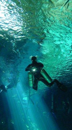 Mango Tulum Hotel: Diving the local cenotes