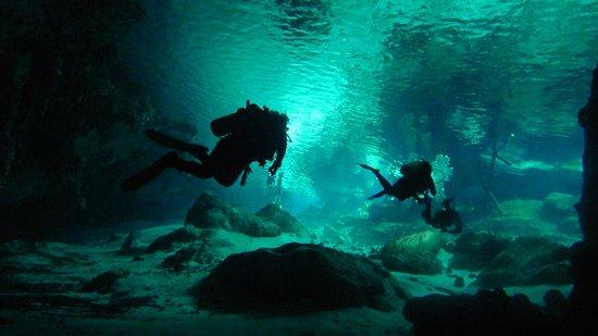 Mango Tulum Hotel: Dive Center on Site