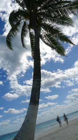 Mango Tulum Hotel: Beach just down the road