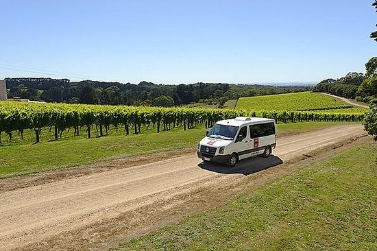 Red Hill, Australien: Port Phillip Estate Vineyard