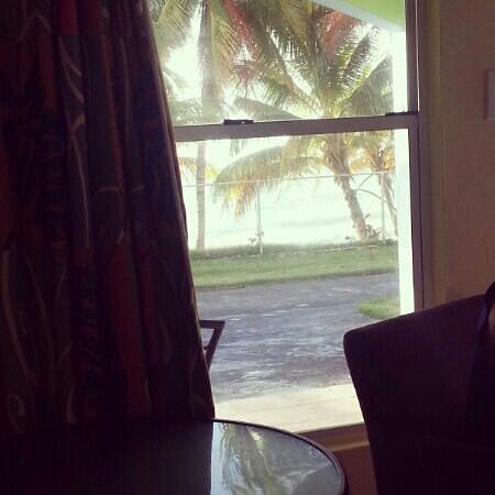 Parador MaunaCaribe: Vista desde la habitación
