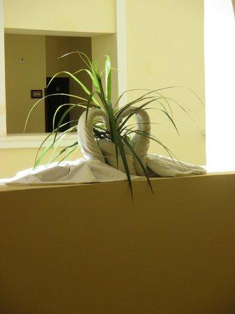 Hotel Riu Guanacaste: towel art