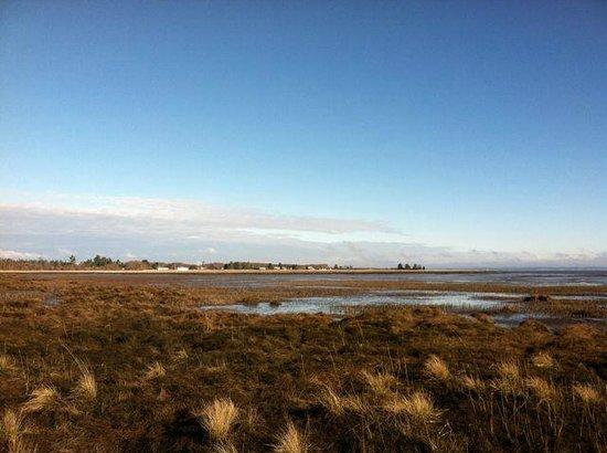 Westport Bayside Bed & Breakfast: View across the bay.