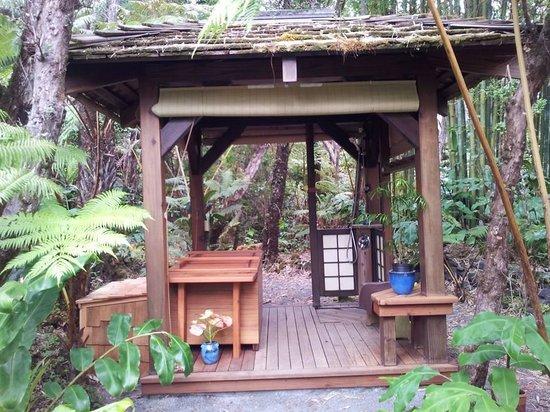 Volcano Rainforest Retreat: Hot tube e doccia