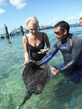 Stingray Beach: Holding the ray
