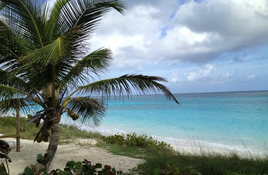 Exuma Palms Hotel: View from the hotel