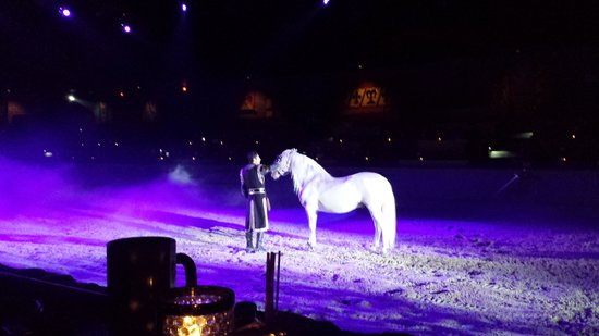 Medieval Times Dinner & Tournament: Horse