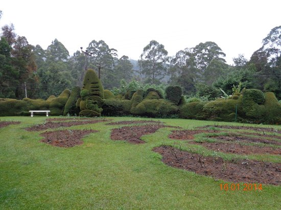 Jetwing St. Andrew's: Topiary Plants & well maintained grounds.