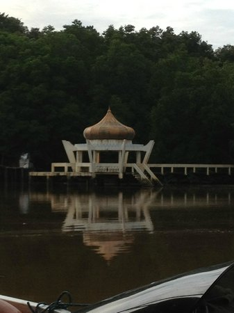 Proboscis Monkey River Cruise: one of the sites along the boat ride to the jungle