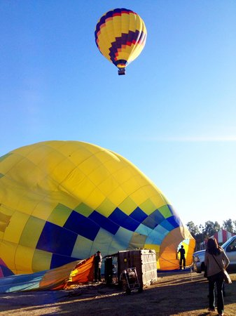 Panorama Balloon Tours