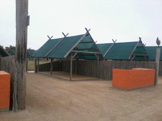 Tiger Reef Campsite: Campsite