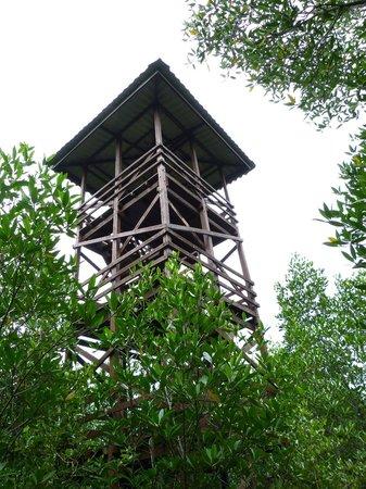 Kota Kinabalu Wetland Centre : Aussichtsturm