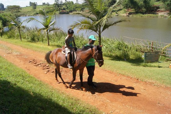 Kiambu, Kenya: Horse Riding