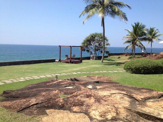 Saman Villas : giardino