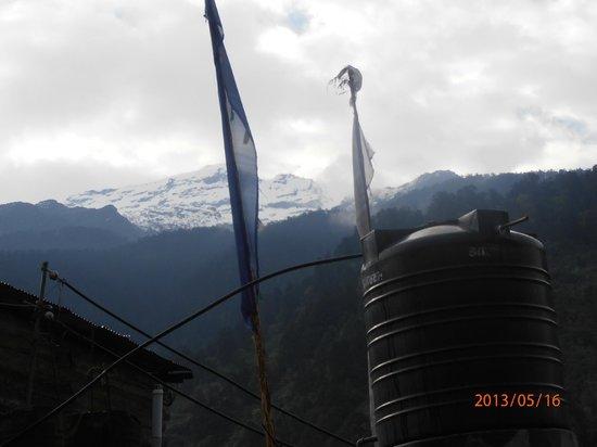 Himalayan Residency