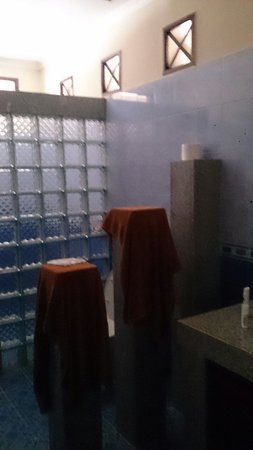 Hotel Puri Rai: Shower room