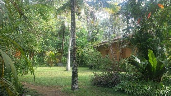 Tisara Villas : Garden