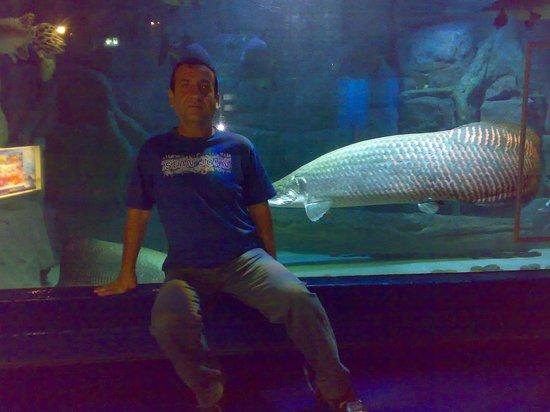Underwater World Pattaya city,Thailand - Picture of Underwater World Pattaya,...