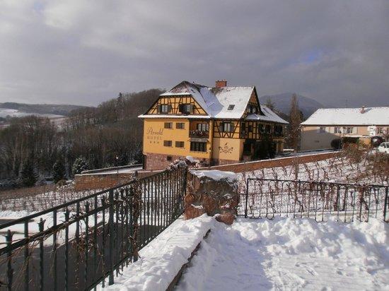 Hotel Arnold : Hôtel Arnold sous la neige