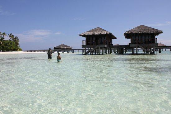 Medhufushi Island Resort: Water-villas we stayed