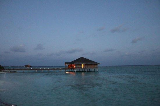Medhufushi Island Resort: Spa