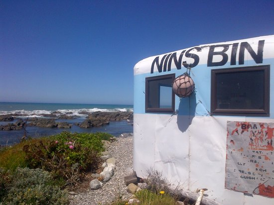 Nin's Bin: Don't let the looks fool you