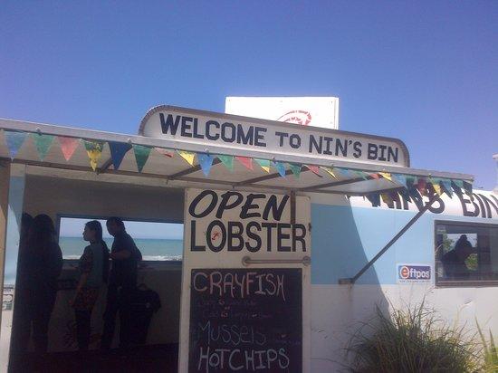 Nin's Bin: It is not what it looks like