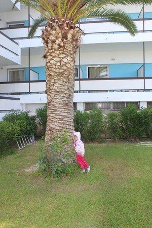 Belair Beach Hotel: Под балконами
