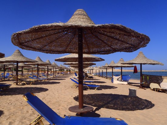 Jaz Sharks Bay: Hausstrand