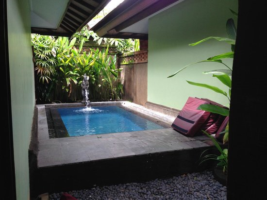 Rama Beach Resort and Villas: Private pool