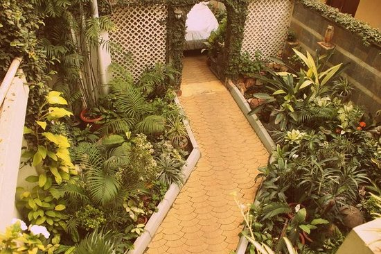 Terrace Gardens Guest House: Gardens all over