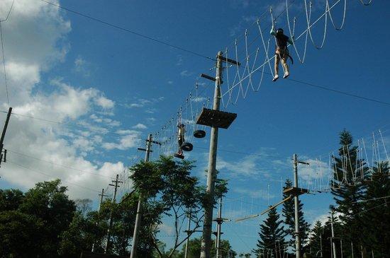 花莲天空步道-高空绳索体验园区