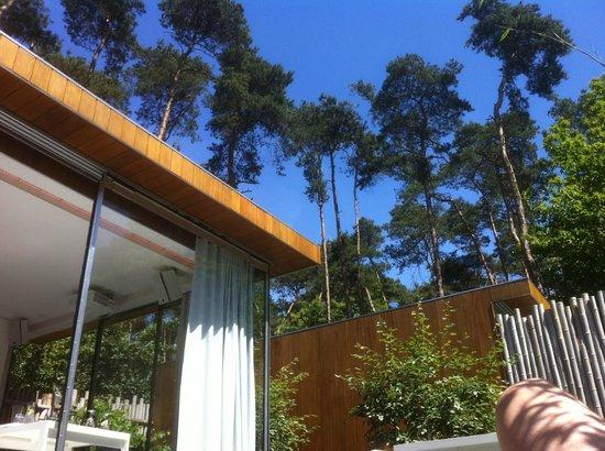 Nooz: Zicht vanuit de lounge terraszetel van het paviljoen.