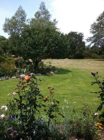 Garden View Bed and Breakfast : View from the Kowhai Room