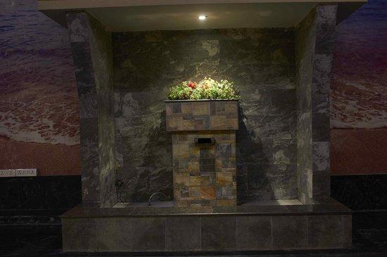 OYO 1475 Hotel WaterFall: waterfall at the atrium