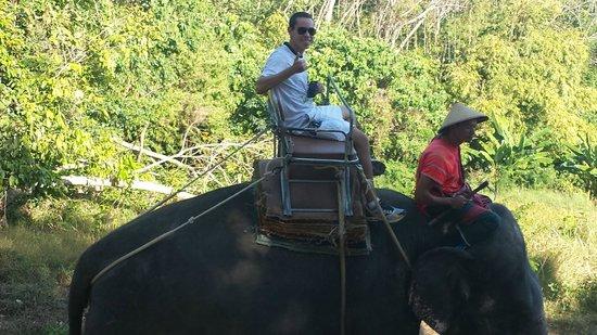 Siam Safari: Elefante Trekking