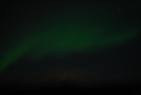 Reykjavik Excursions : Northern Lights