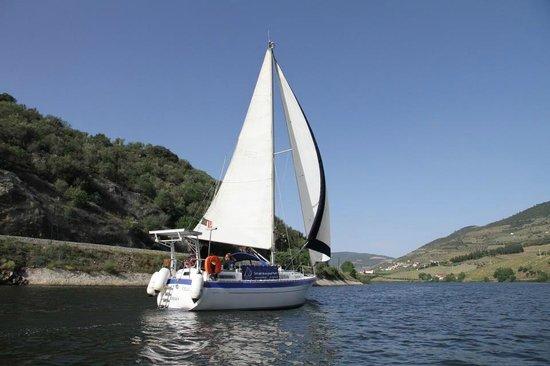 Anima Durius Douro River Cruises