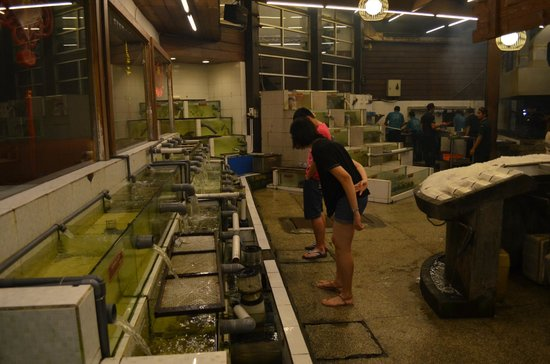 Layar Seafood : The seafood alley