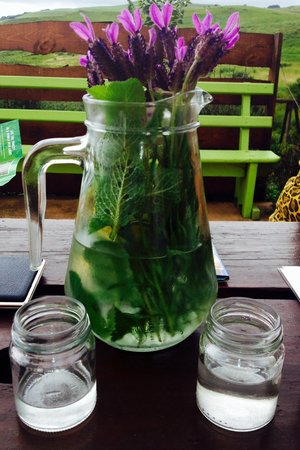 Picklepot Cafe: Cooled fresh mountain water scented with fresh herbs and jam pots for glasses!