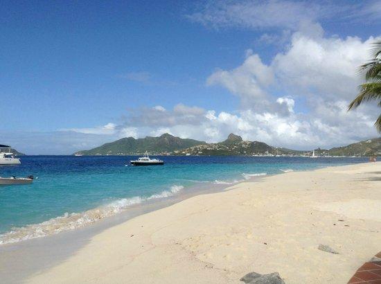 Palm Island Resort & Spa : Nice View