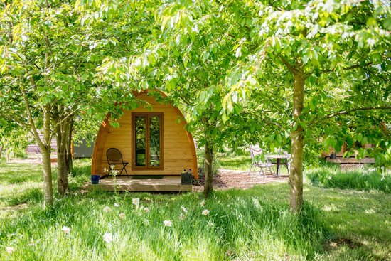 Wootton Park: One of the pods in the trees