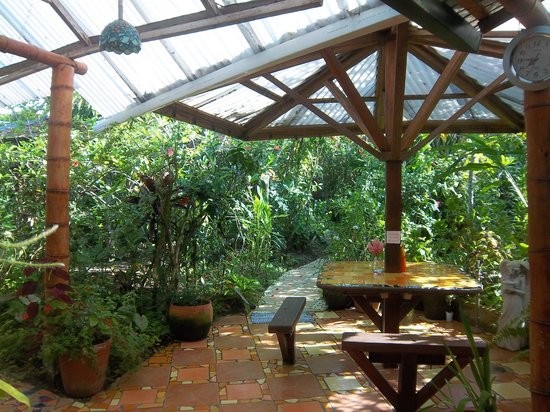 Jacaranda Hotel and Jungle Garden : Zona de comida y descanso