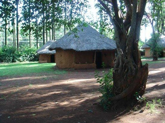Bomas of Kenya : Maison